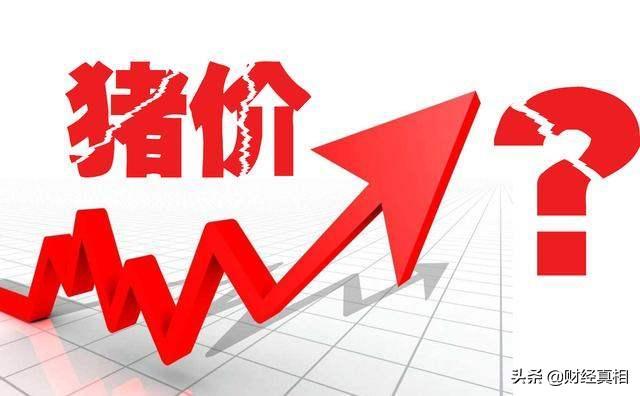 社会资讯_猪肉价格上涨85.7% 吃肉自由或成为普通消费者的新追求!|猪肉 ...