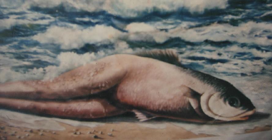 美人鱼现身海滩 科学家证实存在