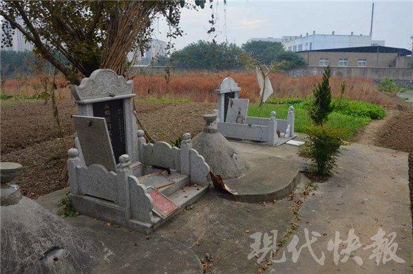 男子上演现实版《盗墓笔记》挖20多座坟墓竟为这事