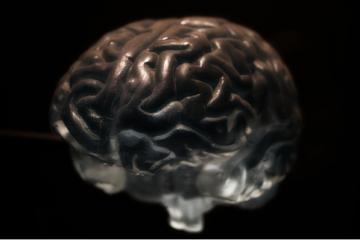 外媒报道称研制出人类大脑可植入信息技术