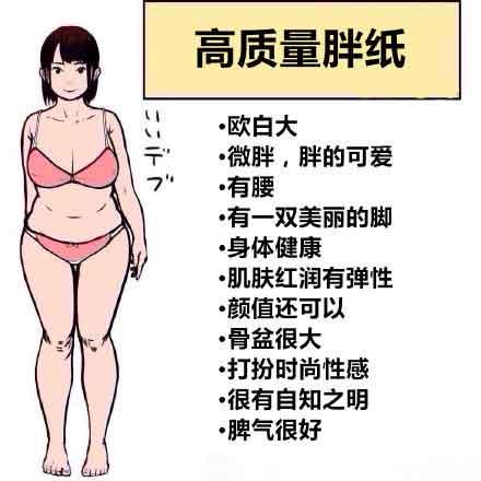 高质量胖纸是什么意思什么梗? 高质量胖纸的标准了解一下