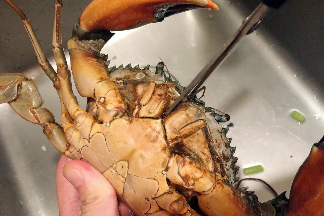 怎样清理螃蟹