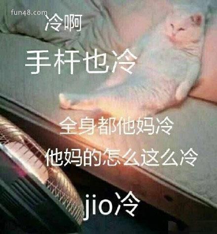 泡jio是什么意思? 泡jio表情包走一波